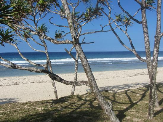 Tamanu on the Beach: Beach