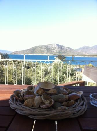 Gera's Olive Grove: uitzicht vanaf balkon!!