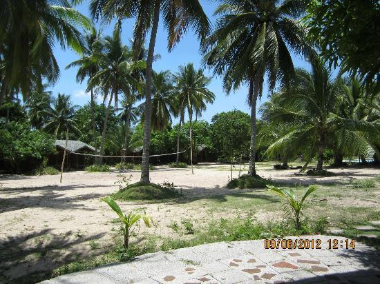 Laiya Coco Grove Resort: The volleyball area