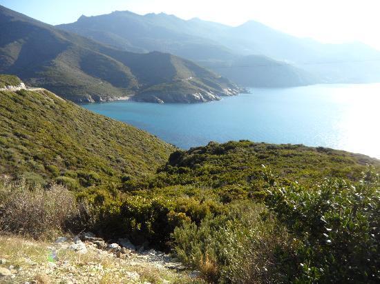 Friendly Corsica