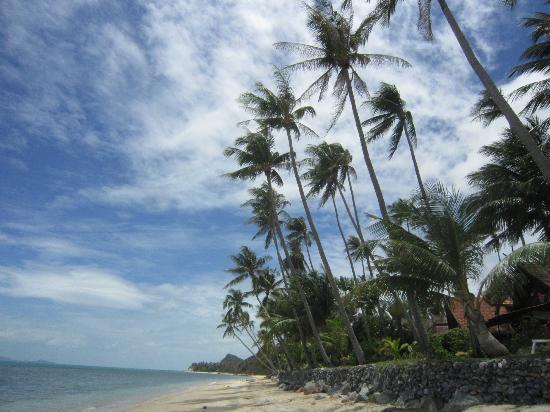 Bang Po Village: plage