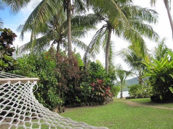 Navutu Stars Fiji Hotel & Resort: View from my Hammock ~ I never tired of it .. sigh