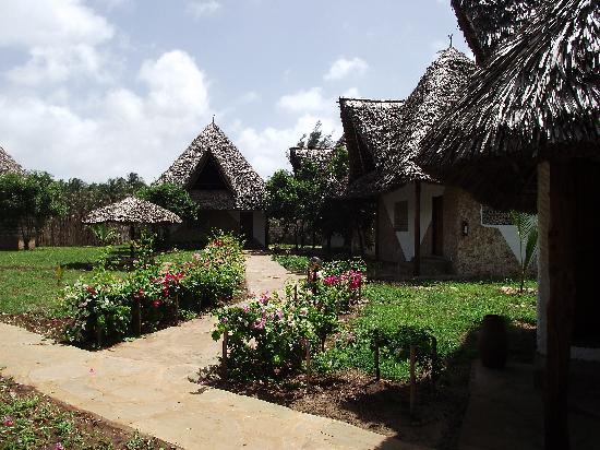 hotel Eco Lodge Jua Bahari : getlstd_property_photo