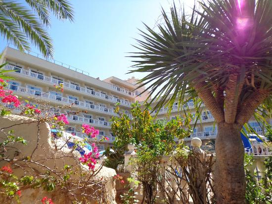 Bahia del Sol Hotel: View from street