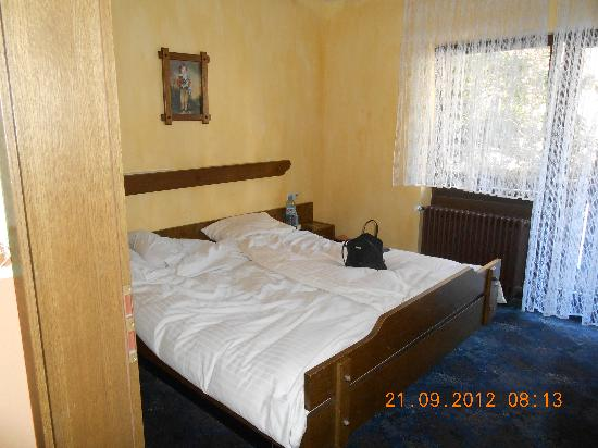 Gruner Baum: hotel