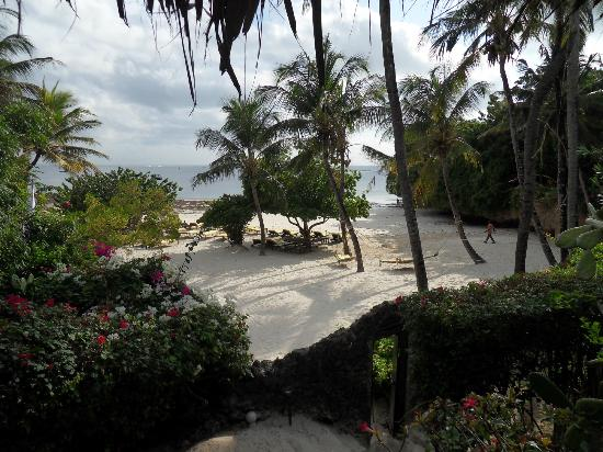 Dorado Cottage: spiaggia