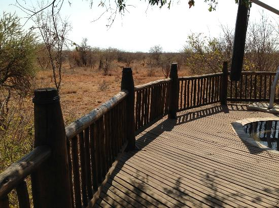 Etali Safari Lodge: View from our room's deck!