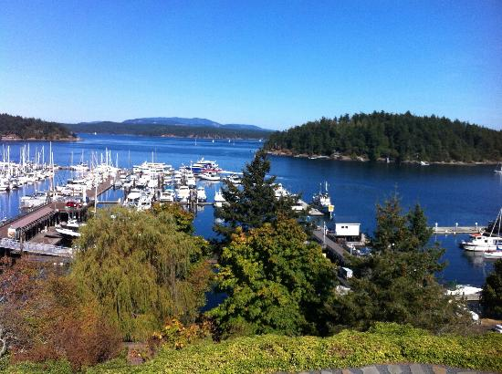 Friday Harbor House: The view from room 32
