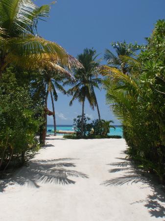 Centara Grand Island Resort & Spa Maldives : Walkway