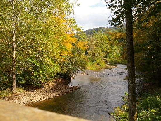 Cheat River Lodge and Riverside Cabins: From the public deck on the river