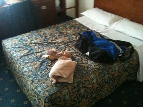 City Hotel: da notare lo spazio attorno al letto e i cuscini oltre che essere per un pezzo uno sopra l'altro