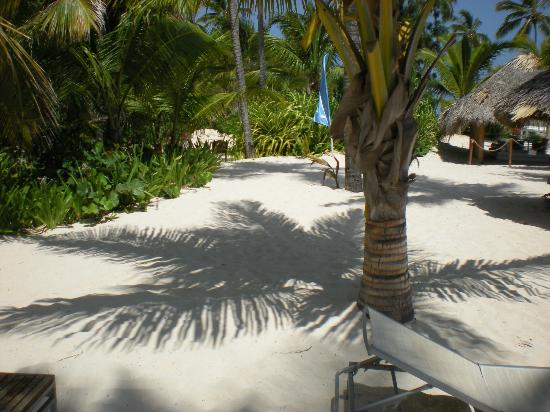 Catalonia Royal Bavaro: Beach area