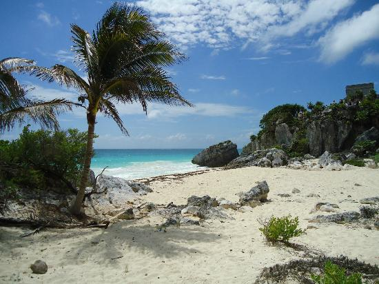 Grand Bahia Principe Tulum: Beach at Tulum Ruins