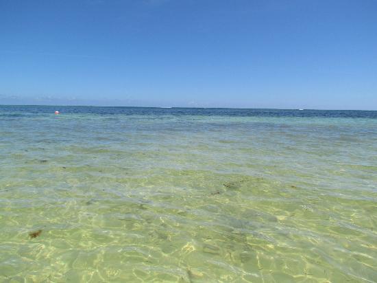 Catalonia Royal Bavaro: beach again