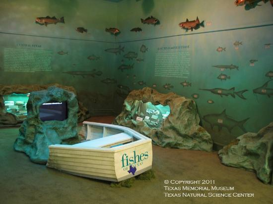 Texas Memorial Museum: Fishes of Texas Exhibit