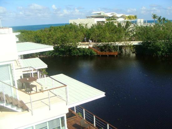 Blue Diamond Riviera Maya: View from room roof top.