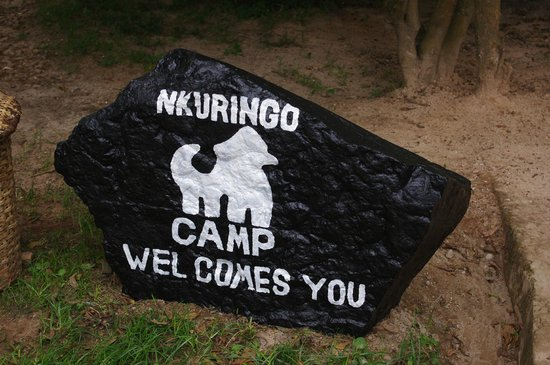 Nkuringo Walking Safaris:                                     Great welcome sign.
