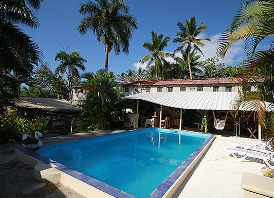 Paradise Surf Apartments: The pool and Communal Area