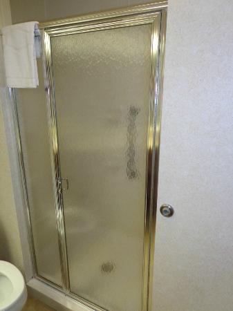Hampton Inn St Louis/Chesterfield: Shower