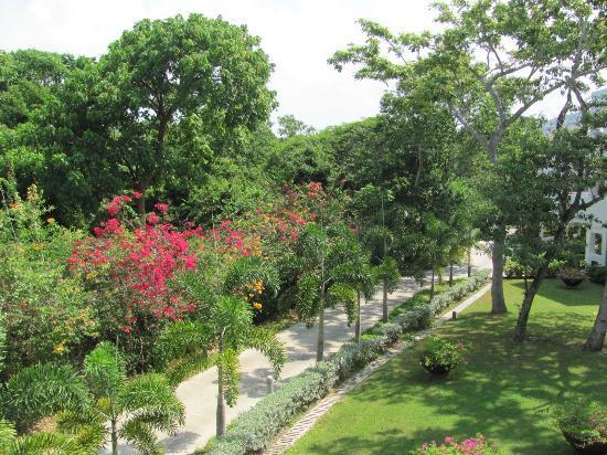 Decameron Baru: Zona Jardines