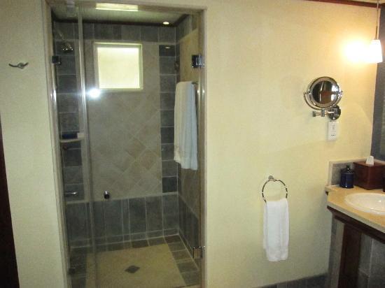 LUX* Grand Gaube: nice big shower