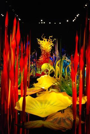 Chihuly Garden and Glass: Breath taking beauty