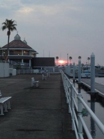 Wakayama Marina City Hotel : 夕陽の桟橋