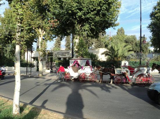 Hotel Sofia: langs boulevard hassan II