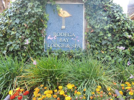 Bodega Bay Lodge: As you enter the driveway