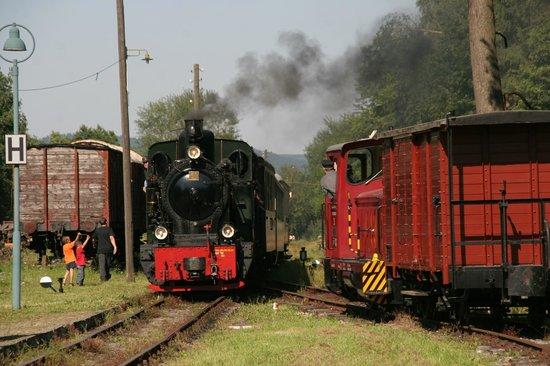 Sauerlaender Kleinbahn