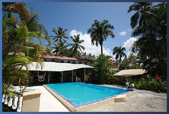 Paradise Surf Apartments : Main communal area with pool, bar and dining