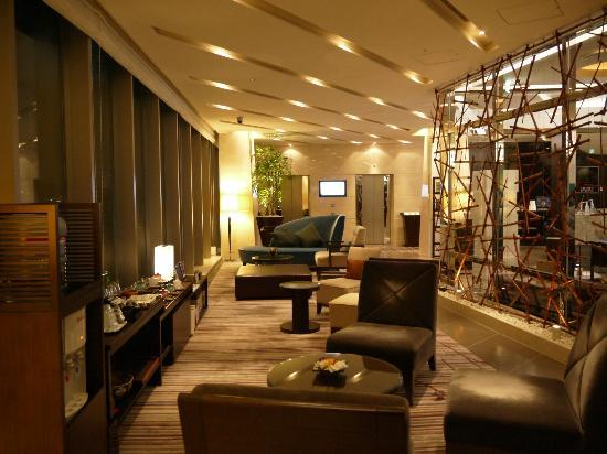 Hotel Ryumeikan Tokyo: View from lobby (on top floor)