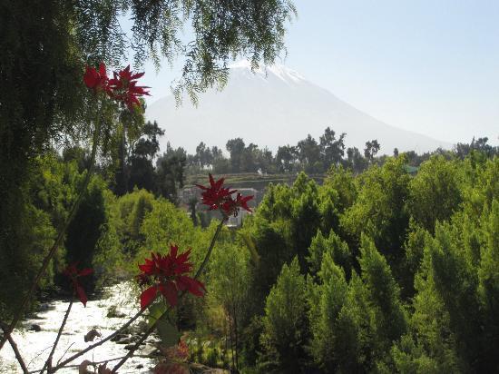 La Posada del Puente : Vulcano El Misti dal giardino dell'hotel