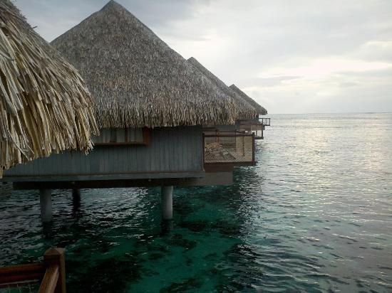 Le Meridien Tahiti : Le Meridien Papeete