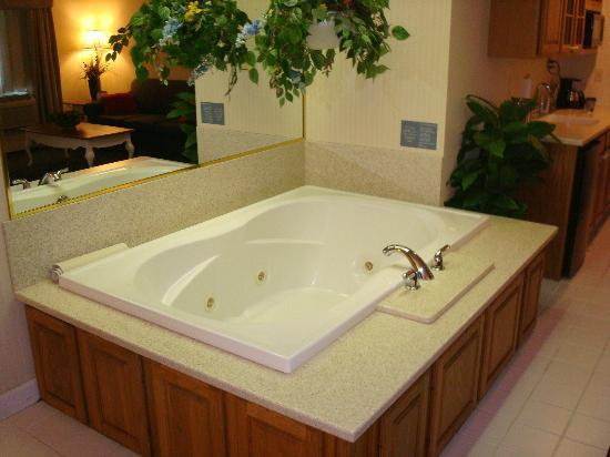 Holiday Inn Express Fremont: Jacuzzi w/ recessed overhead lighting