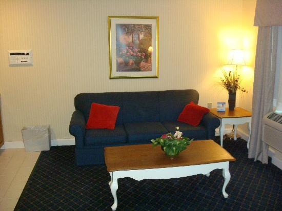 Holiday Inn Express Fremont: Couch area, adjacent to kitchen, opposite the bed.