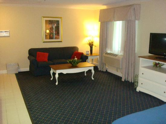 Holiday Inn Express Fremont: Couch area looking from the bed