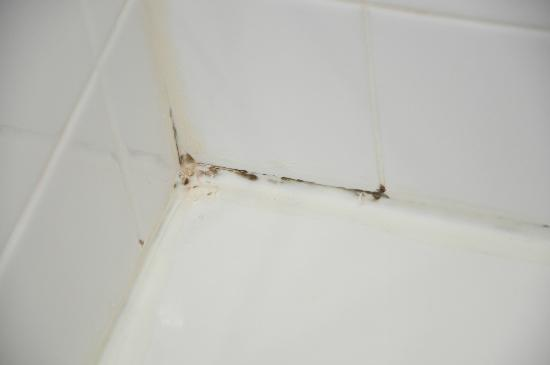Morgantown Marriott at Waterfront Place: Moldy caulking in shower