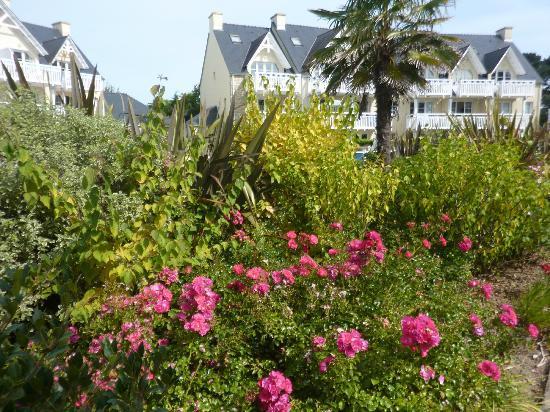 Pierre & Vacances Résidence Cap Azur : Le jardin