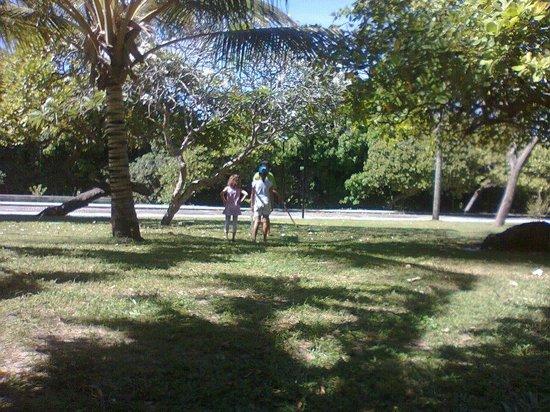 Coco Park : Parque do coco (Aldail Barreto)