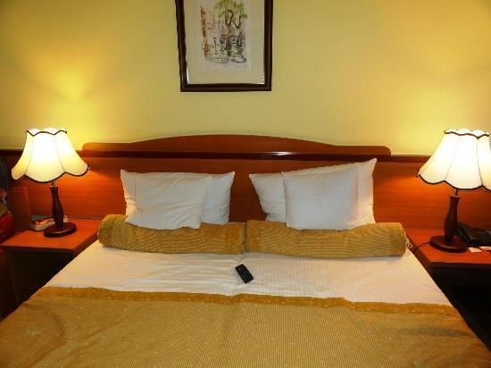 Hotel Jagerhorn: Habitación