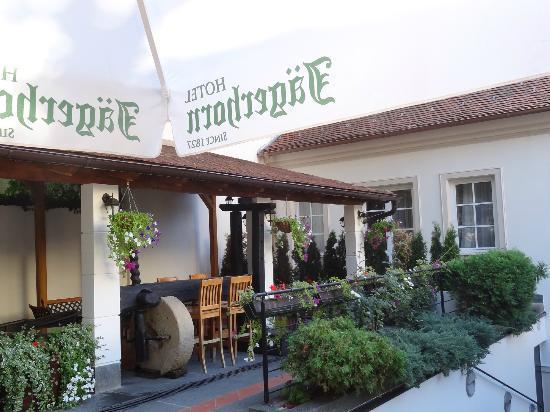Hotel Jagerhorn: Terraza para el desayuno
