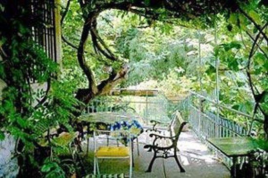 Edera Bed&Breakfast : My garden