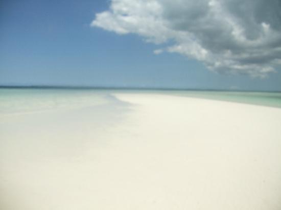 Uroa, Tanzania: Lingua di sabbia al Palumbo Reef
