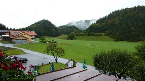 Gasthaus - Pension - Cafe Dorfl: Panorama dalla camera