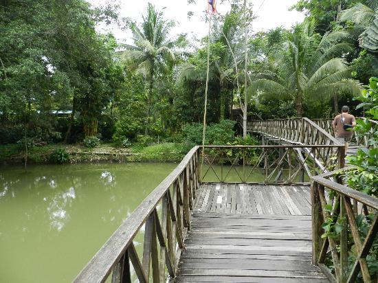 Sepilok Jungle Resort: こんな感じで建物がつながっています