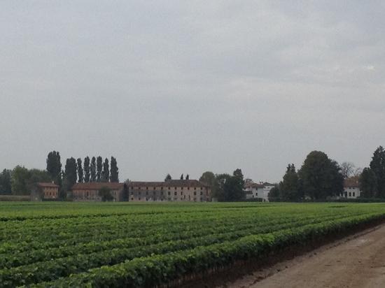 Borgo dei Conti della Torre: View towards the hotel from field