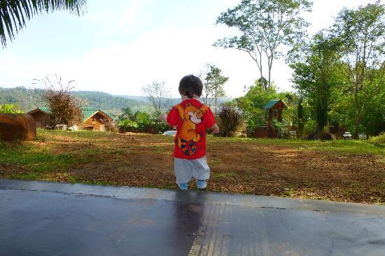 Costa del Sol Iguazu: Vista desde la cochera/parrillero