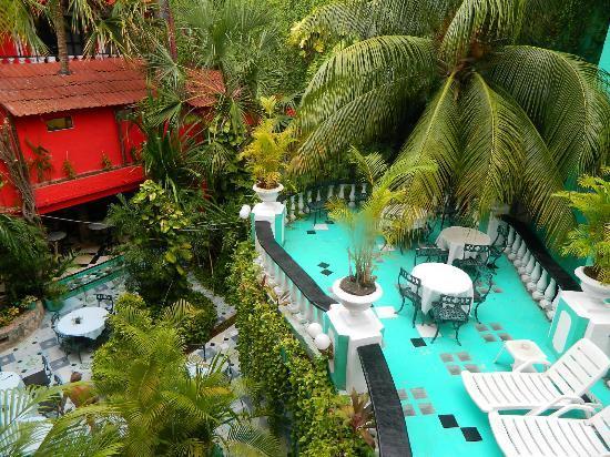 جونجلا كاريبي: gardens
