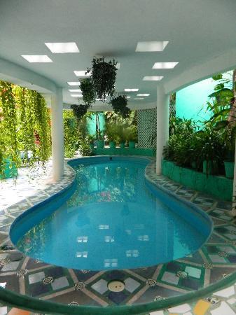 Hotel Jungla Caribe: Pool